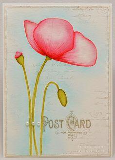 watercolor for card makers - kurssin satoa...