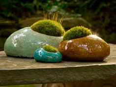 Completely my concept!  As outdoor furniture. Gift Catalog - Moss Rocks