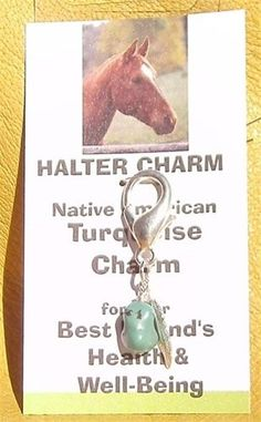 Turquoise Charm for Horse Halter Bridle Saddle by navajobeader