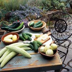 The Great Cucumber Growing Challenge - Organic Gardening - MOTHER EARTH NEWS
