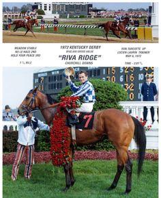 Riva Ridge... Secretariat's stable mate and 1972 Kentucky Derby & Preakness winner...