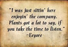Oh and I do love to listen to my plants. And Eeyore's not too hard on the ears, either. :)