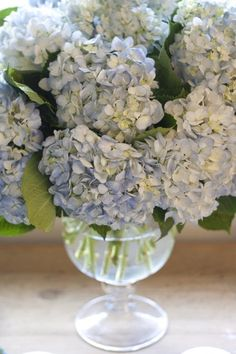 Hydrangeas --love, love them!