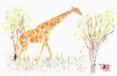 Girafe_Live performance MUSÉUM DE TOULOUSE 24.10.15