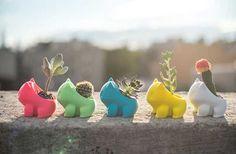Des petits pots de fleurs en forme de Bulbizarre, c'est l'objet adorable du jour, pour que ton chez-toi devienne un véritable centre Pokémon !