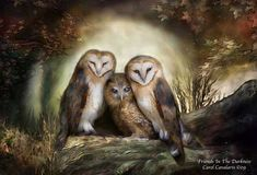 Three Owl Moon is from the 'Beauty In Nature' collection of original wildlife art by Carol Cavalaris. Three sweet barn owls nestle together in the glow of a big full moon.