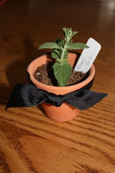Herbal wedding favors