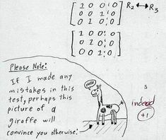 15 Funny Exam Answers - Oddee.com (exam answers, funny exam...)
