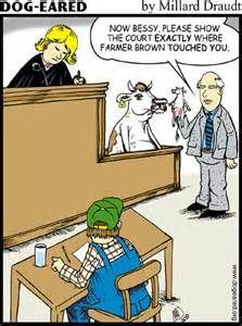 funny courtroom quotes
