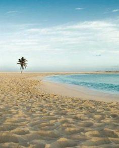 The Cove Atlantis, Paradise Island, Bahamas Bahamas Honeymoon, Honeymoon Spots, Vacation Spots, Italy Vacation, Honeymoon Destinations, Oh The Places You'll Go, Places To Travel, Places To Visit, Atlantis Bahamas