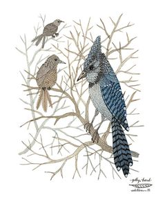 Print: Blue Jay, High Up in the Trees  Medium: archival giclee reproduction print, open edition Paper type: 100% cotton rag paper  Size: 11 x 8.5