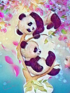 Panda🐼on Branch! Panda🐼on Branch! Cute Panda Wallpaper, Bear Wallpaper, Panda Wallpapers, Cute Cartoon Wallpapers, Save Water Poster Drawing, Halloween Wallpaper Iphone, Panda Love, Panda Panda, Panda Drawing