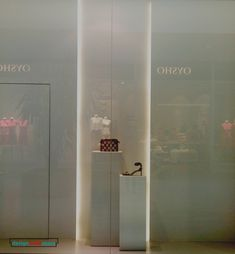 Vertical led lit lines Dublin Ireland, Zara, Windows, Display, Led, Design, Floor Space, Billboard, Ramen