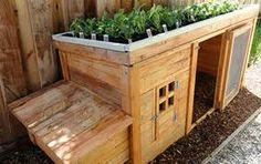 duck house idea for under coop