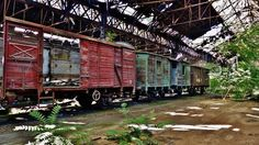 "Abandoned ""Red Star"" Train graveyard – Budapest, Hungary 