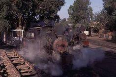 世界の蒸気機関車<パキスタン(チェンガマンガ森林鉄道)>