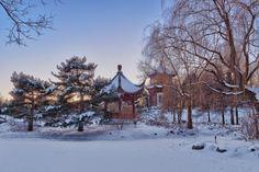 editorial-travel-montreal-botanical-garden-snow-winter-dusk-005