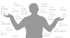 Learn names for body parts in Japanese with this FREE printable cheat sheet. Download full version -> https://lingualift.com/blog/japanese-body-parts/