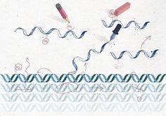 An epigenetics gold rush: new controls for gene expression : Nature News & Comment