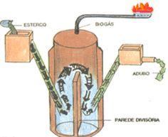 Biodigestor                                                                                                                                                                                 Mais