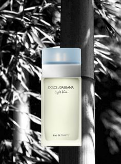 Dolce&Gabbana Perfumes for her: Light Blue - The joy of living the light blue Mediterranean life. Rediscover the original celebration of sensual Mediterranean style. Capturing sun-drenched summer days and dazzling nights, this colorful, fresh, floral-fruity scent reflects the sexiness of the Mediterranean lifestyle. Top notes: cedar, apple, bluebell. Heart Notes: bamboo, jasmine, white rose. Base Notes: citron wood, amber, musk.