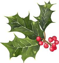 watercolour holly - Google Search