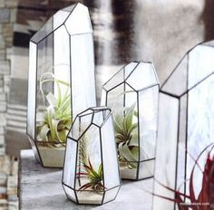 Unique faceted terrariums are handmade from translucent milky white stained glass and clear glass panels. The terrariums are watertight so can be used with a variety of plants and displays.