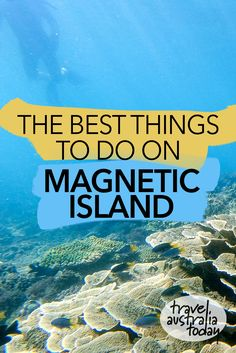The best things to do on Magnetic Island in Queensland, Australia. Just off the coast of Townsville, Magnetic Island is one of the best islands in Australia. There are lots of things to see on Magnetic Island, including wild koalas, other wildlife, walking trails, beaches, coral reefs and more. Here are my tips for what to do on Magnetic Island in Queensland, Australia. #travel #australia #australiatravel #queensland #townsville #magneticisland Travel Advice, Travel Tips, Australia Travel Guide, Adventure Activities, Worldwide Travel, Coral Reefs, New Zealand Travel, South America Travel, Queensland Australia