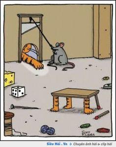 Đây là con chuột kinh dị nhất mà mình từng biết
