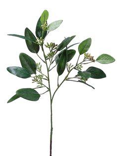 Seeded Eucalyptus Spray   Silk Flowers   Afloral.com
