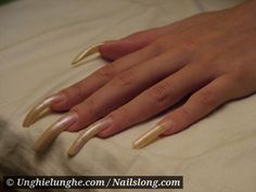 kismet - Nailslong.com