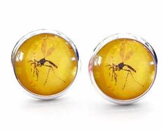 Jurassic World Park Mosquito In Amber T Rex Dinosaur Cute Stud Earrings.  Available as cufflinks