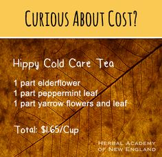 Hippy Cold Care Tea - herbal remedy. Studying and practicing herbalism can sometimes be conceived as an expensive journey. Maybe too expensive. It's not true though! Learn how to make affordable herbal remedies to benefit your health and your family's