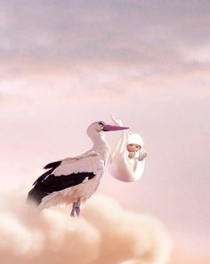 Picture of a stork carrying a baby. Cute Animal Pictures, Baby Pictures, Baby Illustration, Illustrations, Pregnancy Art, Baby Boy Themes, Mother Art, Cute Baby Videos, Clay Baby