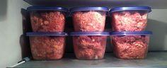 Store raw dog food in freezer