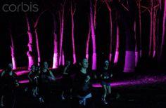 Location - centennial park  Use neon lights to highlight trees