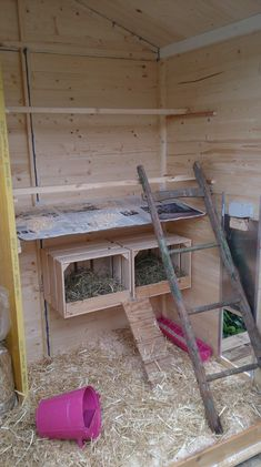 Courteous rehabilitated how to build a chicken coop Find savings Chicken Roost, Easy Chicken Coop, Chicken Garden, Chicken Pen, Chicken Life, Backyard Chicken Coops, Chicken Coop Plans, Building A Chicken Coop, Chickens Backyard