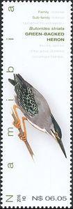 Striated Heron (Butorides striata)