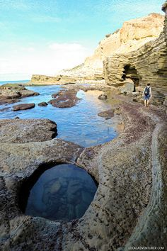Amazing Sea Life at Cabrillo National Monument Tide Pools, San Diego, CA.