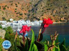 Kreta News Weihnachten in Griechenland Sonnenurlaub im Oktober auf Kreta Wanderurlaub in Griechenland Christmas In Greece