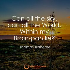 Can all the sky can all the World Within my Brain-pan life? -Thomas Traherne