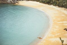 Abel Tasman National Park   It's Settled; A Visit To New Zealand Will Change Your Life Forever