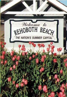 Quiero una casa playera en Rehoboth Beach.  La playa es el lugar favorito de mi familia.