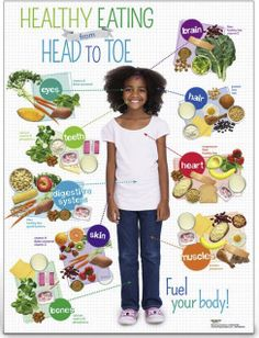 Health Nutrition for Kids: USDA MyPlate, Child Nutrition, Nutrition Education, Kids Health EducationKids Healthy Eating from Head to Toe Spanish Poster Nutrition Education, Sport Nutrition, Nutrition Chart, Nutrition Activities, Nutrition Tips, Healthy Foods To Eat, Health And Nutrition, Nutrition Tracker, Nutrition Classes
