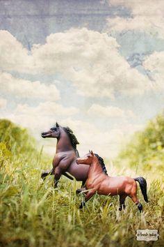 Vintage Breyer horse print.