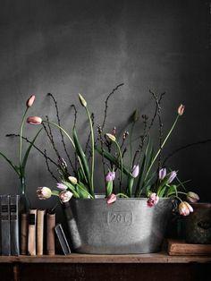 auffallendes Arrangement grauer Hintergrund rosa Tulpen Metallgefäß - Bücher