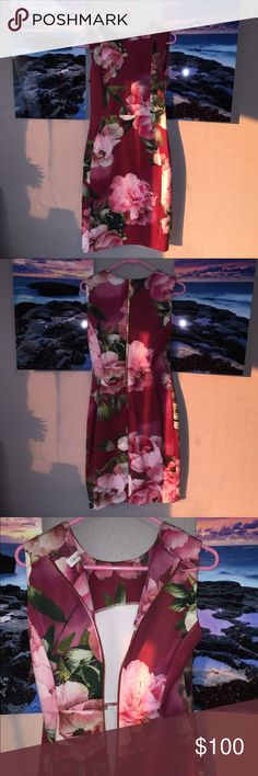 Calvin Klein Rose Floral Bandage Sleeveless Dress This is an absolutely beautiful dress that can be for any work/formal event you can think of! It has large pink flowers all around the body of the dress with a deep burgundy color as the base. It features a gold zipper that goes down to above your bum. Calvin Klein Dresses Midi
