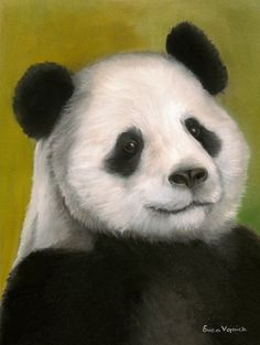 Panda Art by Erica Vojnich. Portrait of Tai Shan created in Pastel. Limited Edition Giclee Prints available 20% of the proceeds donated to Pandas International #Panda @Teri McPhillips McPhillips Sews ~ International