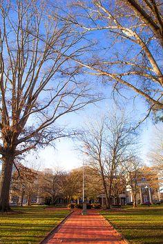 The University of Montevallo, Alabama