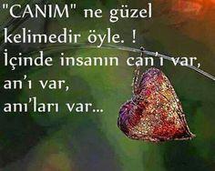 CANIM